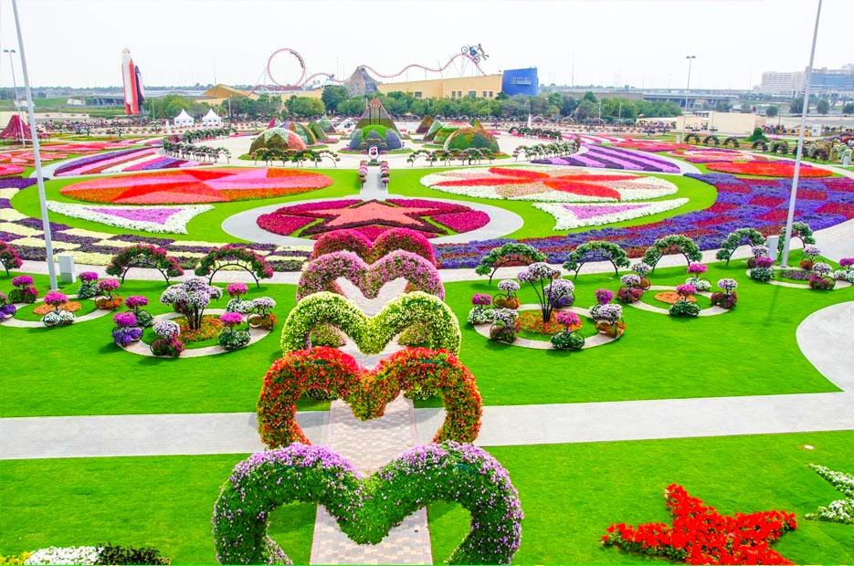 miracle garden - Garden
